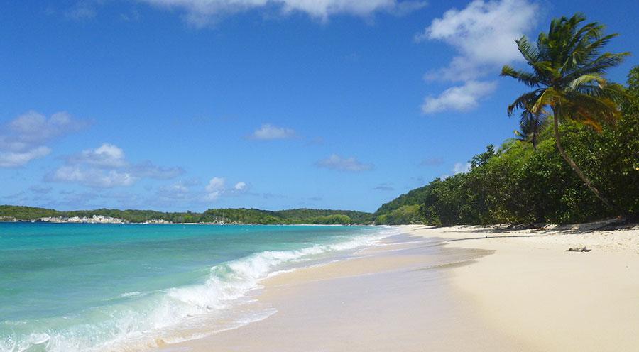 sensations-voyage-destination-guadeloupe-marie-galante-plage4