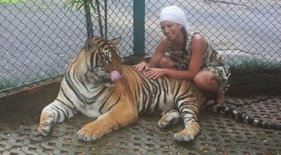 sensationsvoyage-voyage-thailande-chiang-mai-tigre-tiger