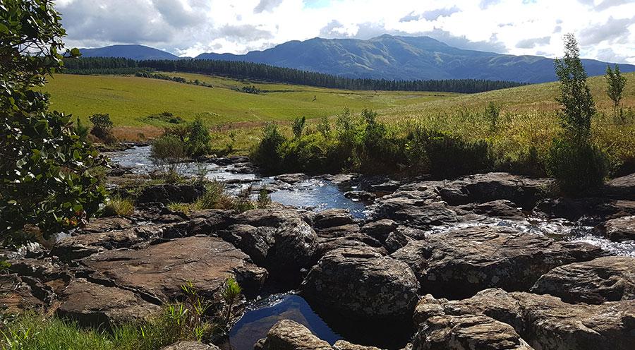 Mac Mac Pools, Mac Mac Falls, Mpumalanga Afrique du Sud - Sensations Voyage le blog, expériences