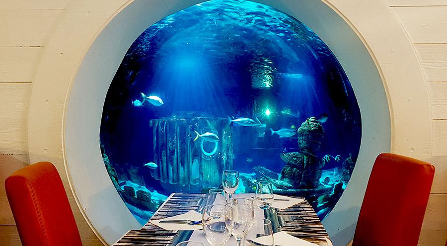 Aquarium Sea Life Paris, restaurant La Criée - Sensations Voyage le blog, expériences