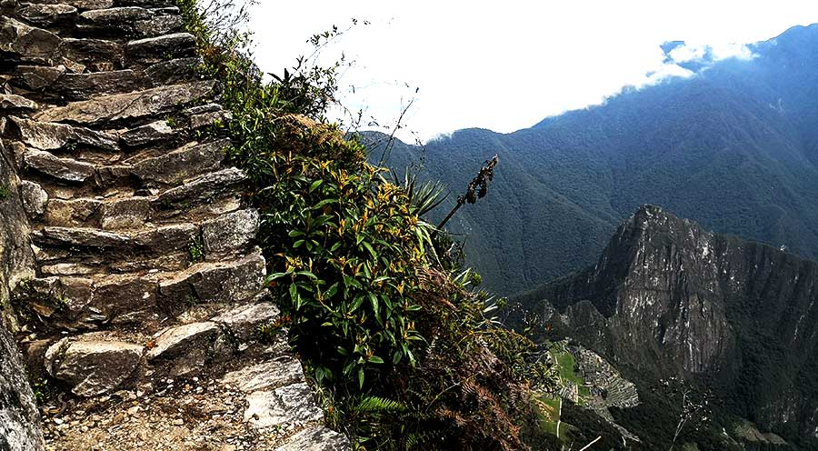 sensations voyage sensationsvoyage perou billet machu picchu escalier top view