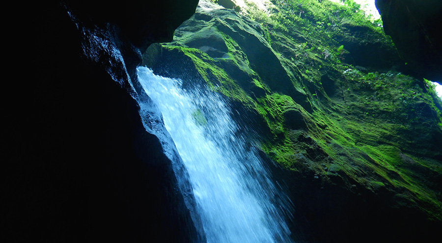 sensations-voyage-voyages-photos-martinique-experience-cascade-gorges-falaise-canyoning-descente-aventure-vert-evad
