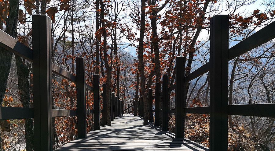 sensations-voyage-voyages-coree-du-sud-korea-pyeongchang-arii-hill-jeongseon-bByeongbangchi-nature-korea-experiences-bons-plans