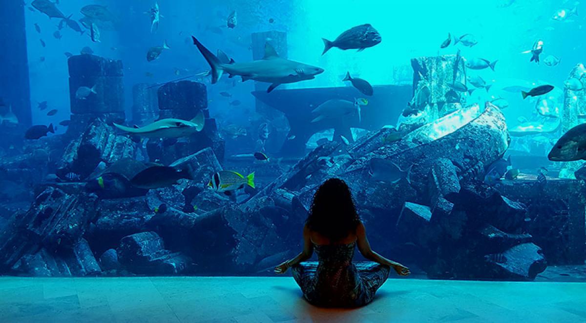 sensations-voyage-dubai-atlantis-lost-chamber2