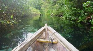 sensations-voyage-republique-dominicaine-samana-mangrove1