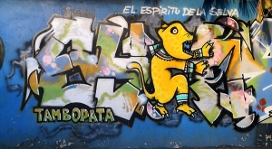 sensations-voyage-sensationsvoyage-perou-peru-blog-amazonie-amazonia-puerto-maldonado-streetart-graffitis-tambopata