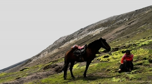 sensations-voyage-sensationsvoyage-perou-peru-cusco-cuzco-rainbow-mountain-cheval-3