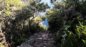 sensations-voyage-sensationsvoyage-perou-peru-machu-picchu-merveille-du-monde-steps-stairs-escalier