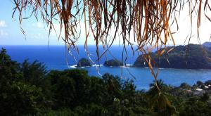 sensations-voyage-voyage-photos-dominique-ile-horizon