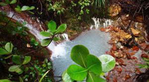 sensations-voyage-voyage-photos-la-dominique-bowing-lake-cascade