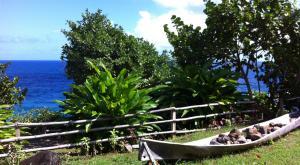 sensations-voyage-voyage-photos-la-dominique-ile-nature-bord-de-mer