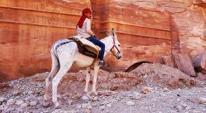 sensationsvoyage-sensations-voyage-jordanie-jordan-photos-petra-ane-bedouin