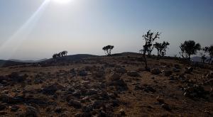 sensationsvoyage-sensations-voyage-jordanie-jordan-photos-route-des-rois-paysage-2