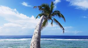 sensationsvoyage-voyage-sri-lanka-maldives-beach-plage-4