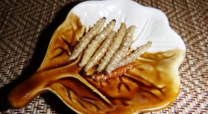 sensationsvoyage-voyage-thailande-chiang-mai-insectes-2