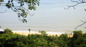 sensationsvoyage-voyages-destination-photos-guyane-plage-forest