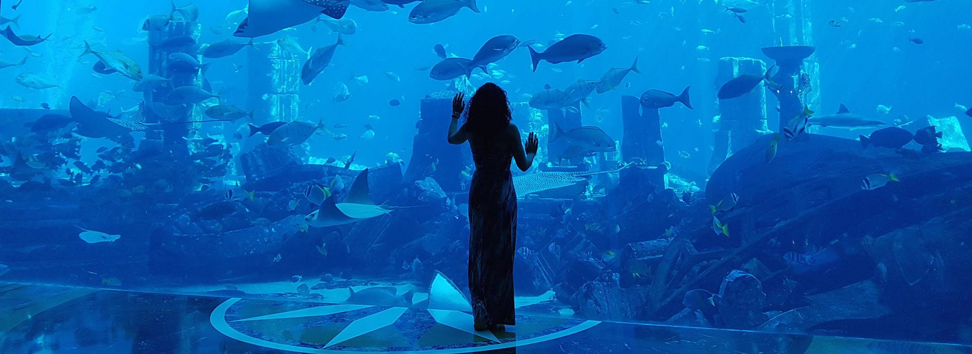 senstations-voyage-accueil-dubai-aquarium_re