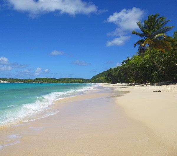 senstations-voyage-destinations-guadeloupe-vignette-plage