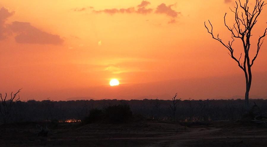 sensationsvoyage-srilanka-photos-yala-safari-leopard-trails-sunset-21