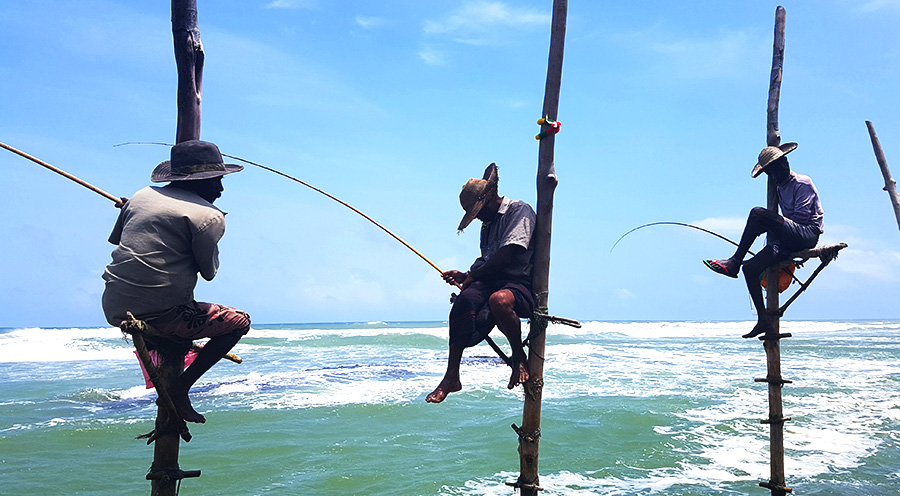 sensations voyage sri lanka-voyage-sri-lanka-photo-weligama-stiltfishermen