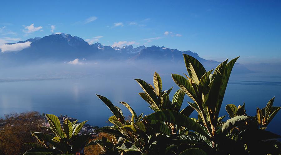 sensations-voyage-voyage-photos-suisse-landscape-paysage