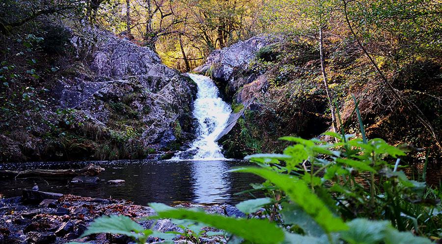 sensationsvoyage-sensations-voyage-morvan-automne-cabane-arbres-cascade-saut-gouloux