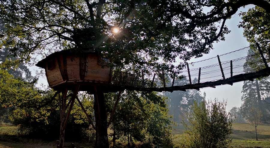 sensationsvoyage-sensations-voyage-morvan-bons-plans-cabane-arbres-domaine-chaligny-cabane-grenouille