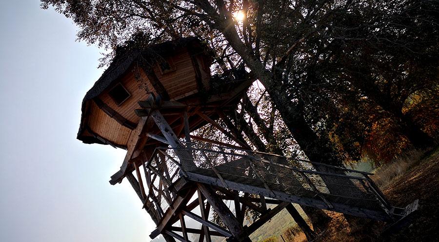 sensationsvoyage-sensations-voyage-morvan-bons-plans-cabane-arbres-domaine-chaligny-cabane-pourpre