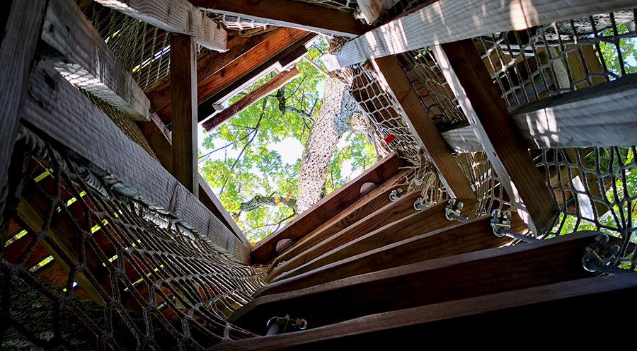 sensationsvoyage-sensations-voyage-morvan-bons-plans-cabane-arbres-domaine-chaligny-echelle-cozy-ecolodge-france-escalier