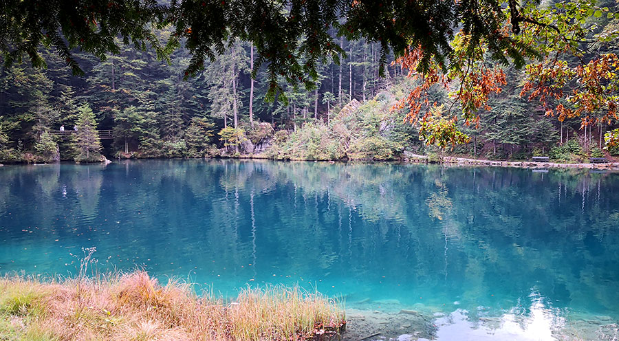 sensationsvoyage-sensations-voyage-suisse-blausee-lake-lac-bleu