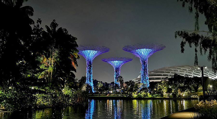 sensations_voyage_photos_singapour_garden_supertree_grove