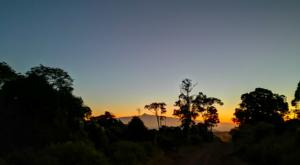 sensations-voyage-album-photos-kenya-aberdades-national-park-mont-kenya-3