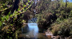 sensations-voyage-album-photos-kenya-aberdades-national-park-mont-kenya-safari-rivieres