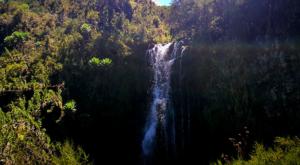 sensations-voyage-album-photos-kenya-aberdades-national-park-mont-kenya-safari-treetops-hikking-waterfall-2