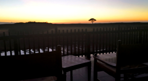 sensations-voyage-album-photos-kenya-aberdades-national-park-treetops-lodge-deck-view-sunrise