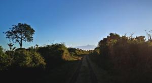 sensations-voyage-album-photos-kenya-aberdades-national-park-treetops-mont-kenya-road
