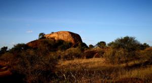 sensations-voyage-album-photos-kenya-liakipia-baboon-roc-landscape-2