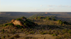 sensations-voyage-album-photos-kenya-liakipia-baboon-roc-landscape-3