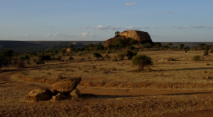 sensations-voyage-album-photos-kenya-liakipia-baboon-roc-landscape-4
