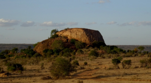 sensations-voyage-album-photos-kenya-liakipia-baboon-roc-landscape-5