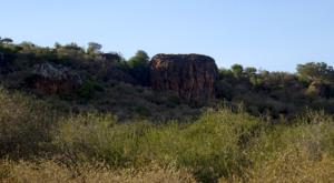 sensations-voyage-album-photos-kenya-liakipia-baboon-roc-landscape-6