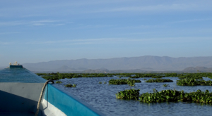 sensations-voyage-album-photos-kenya-naivasha-loldia-house-lake-cruise-paysage