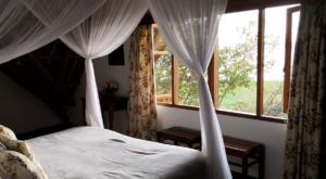 sensations-voyage-album-photos-kenya-naivasha-loldia-house-room-with-a-view