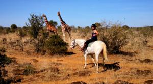 sensations-voyage-album-photos-kenya-ridding-safari-sosian-giraffes-laikipia-2