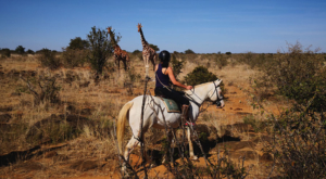 sensations-voyage-album-photos-kenya-ridding-safari-sosian-giraffes-laikipia-3