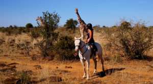 sensations-voyage-album-photos-kenya-ridding-safari-sosian-giraffes-laikipia