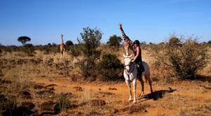 sensations-voyage-album-photos-kenya-ridding-safari-sosian-giraffes