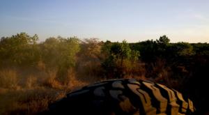 sensations-voyage-album-photos-kenya-sosian-ranch-game-drive