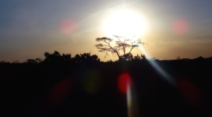 sensations-voyage-album-photos-kenya-sosian-ranch-laikipia-sunrise