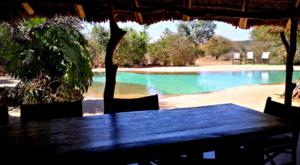 sensations-voyage-album-photos-kenya-sosian-swimming-pool-2